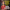 Başkan Yıldırım, Romalı yıldız oyuncunun mesajını twitter'dan paylaştı
