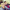 Kazada yaralanan Muhammet öldü, arkadaşının tedavide