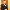 Giresun Üniversitesi Rektörü Coşkun, istifa etti
