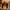 Caz müziğinin önemli ismi Cüneyt Sermet vefat etti