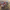 Otomobil şarampol devrildi: 2 çocuk öldü, 3 yaralı